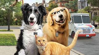 Cats & Dogs 3: Paws Unite (2020) Full Movie - HD 720p