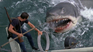 Jaws (1975) Full Movie - HD 720p BluRay